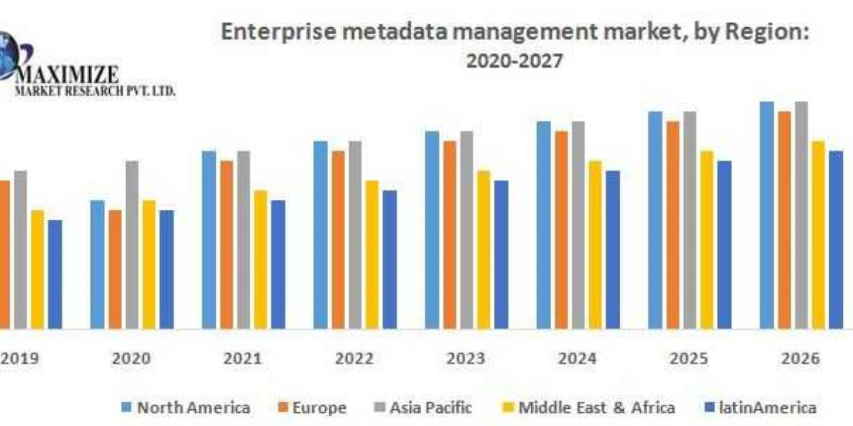 Enterprise Metadata Management Market